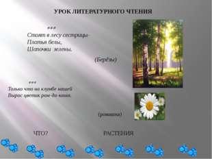 УРОК ЛИТЕРАТУРНОГО ЧТЕНИЯ  Стоят в лесу сестрицы- Платья белы, Шапочки з