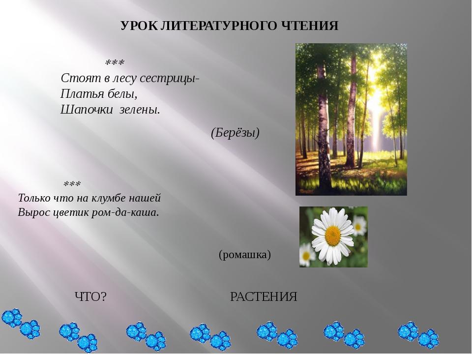 УРОК ЛИТЕРАТУРНОГО ЧТЕНИЯ  Стоят в лесу сестрицы- Платья белы, Шапочки з...