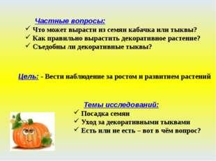 Частные вопросы: Что может вырасти из семян кабачка или тыквы? Как правильно