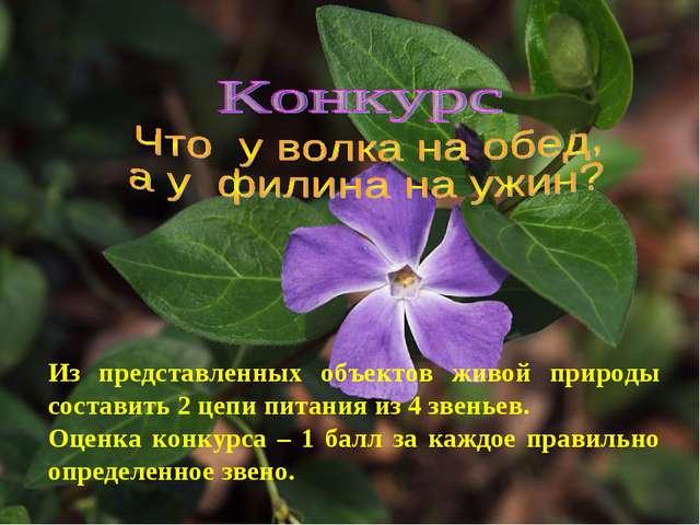 Из представленных объектов живой природы составить 2 цепи питания из 4 звенье...