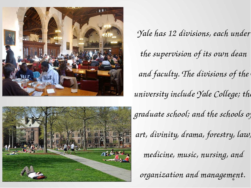 Yale has 12 divisions, each under the supervision of its own dean and faculty...