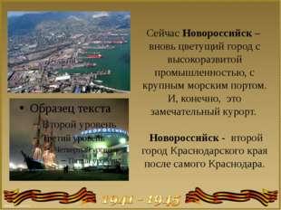 Сейчас Новороссийск – вновь цветущий город с высокоразвитой промышленностью,