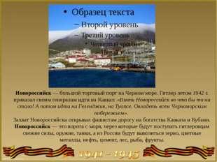 Новороссийск — большой торговый порт на Черном море. Гитлер летом 1942 г. при