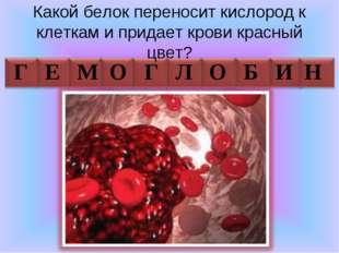 Какой белок переносит кислород к клеткам и придает крови красный цвет? Г Е М