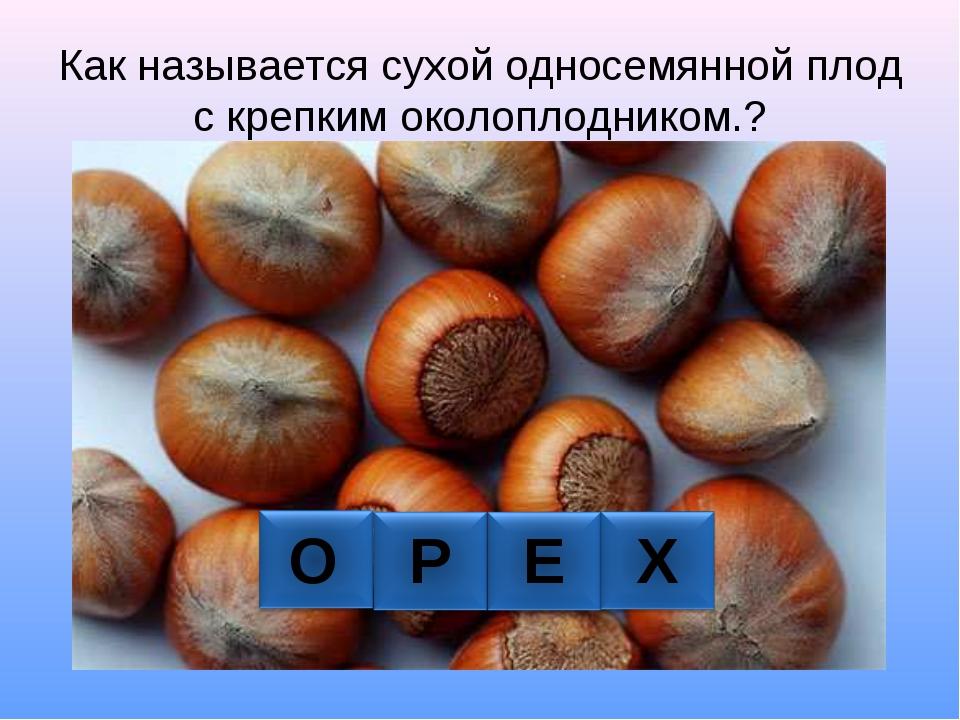 Как называется сухой односемянной плод с крепким околоплодником.? О Р Е Х