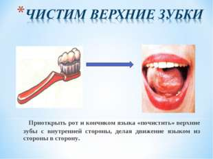 Приоткрыть рот и кончиком языка «почистить» верхние зубы с внутренней сторон