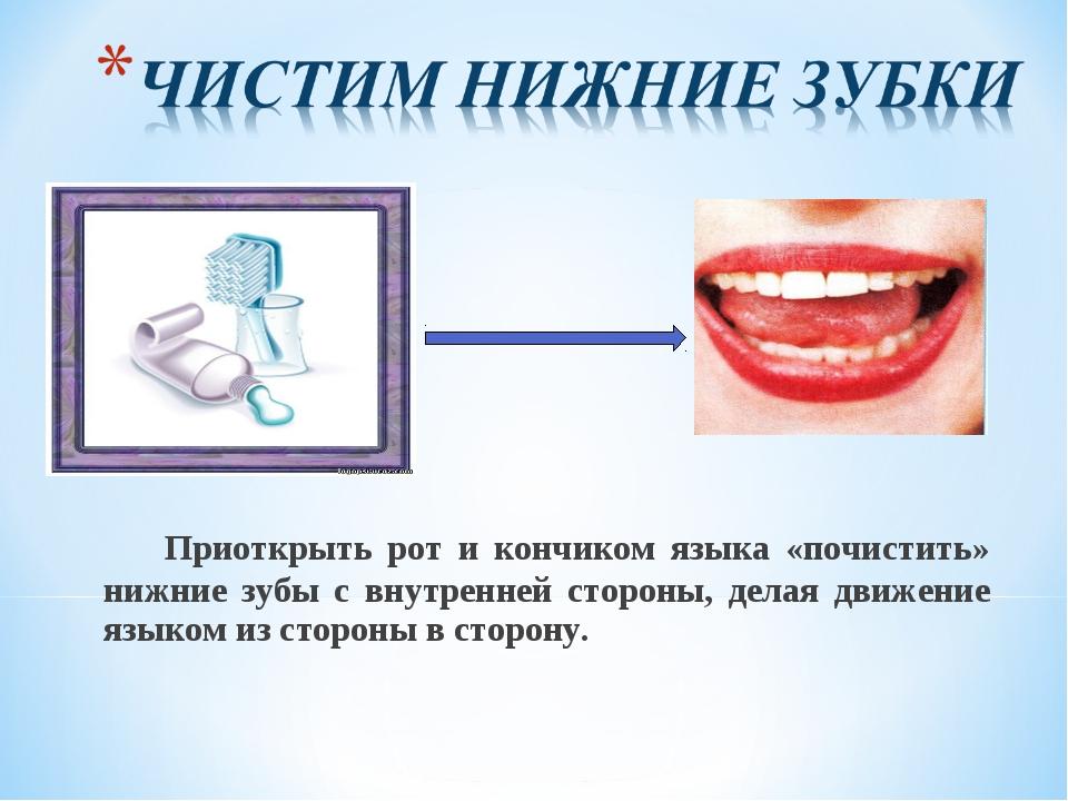Приоткрыть рот и кончиком языка «почистить» нижние зубы с внутренней стороны...