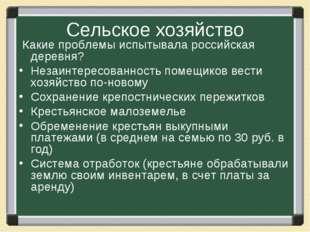 Сельское хозяйство Какие проблемы испытывала российская деревня? Незаинтересо