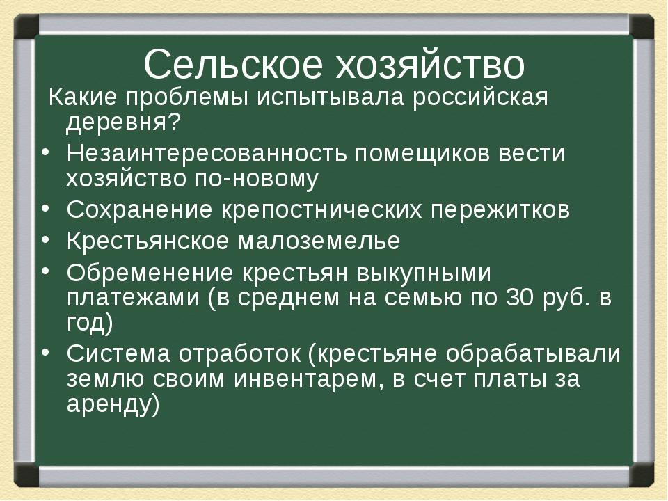 Сельское хозяйство Какие проблемы испытывала российская деревня? Незаинтересо...