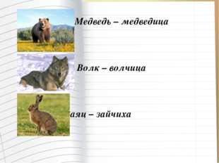 Медведь – медведица Волк – волчица Заяц – зайчиха