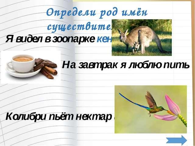 Я видел в зоопарке кенгуру. На завтрак я люблю пить кофе. Колибри пьёт нектар...