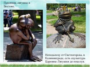 Памятник лягушке в Бостоне. Неподалеку от Светлогорска, в Калининграде, есть