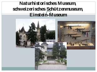 Naturhistorisches Museum, schweizerisches Schϋtzenmuseum, Einstein-Museum