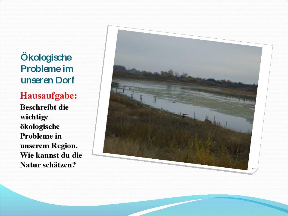 Ökologische Probleme im unseren Dorf Hausaufgabe: Beschreibt die wichtige öko...