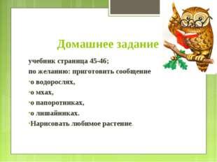 Домашнее задание учебник страница 45-46; по желанию: приготовить сообщение о