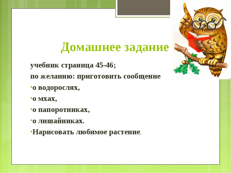 Домашнее задание учебник страница 45-46; по желанию: приготовить сообщение о...