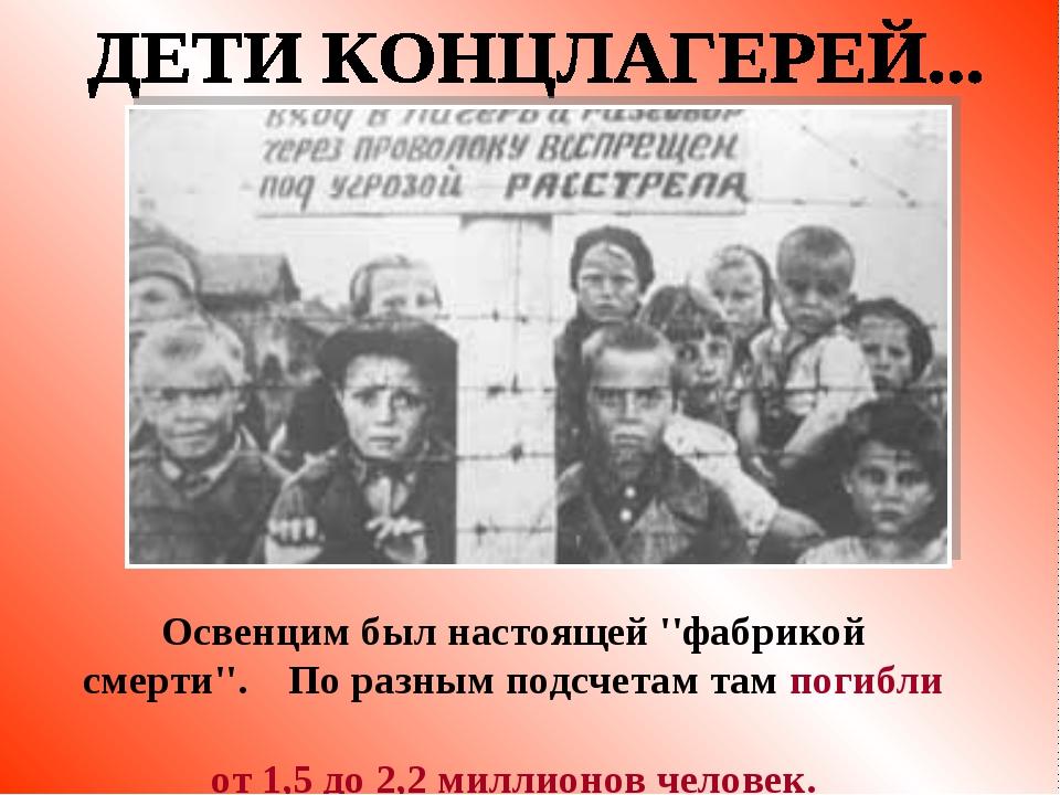 Освенцим был настоящей ''фабрикой смерти''. По разным подсчетам там погибли о...