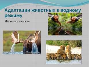 Адаптации животных к водному режиму Физиологические