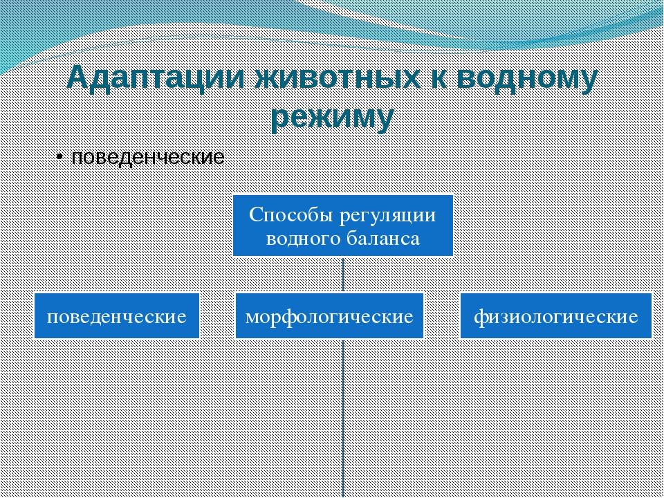 Адаптации животных к водному режиму