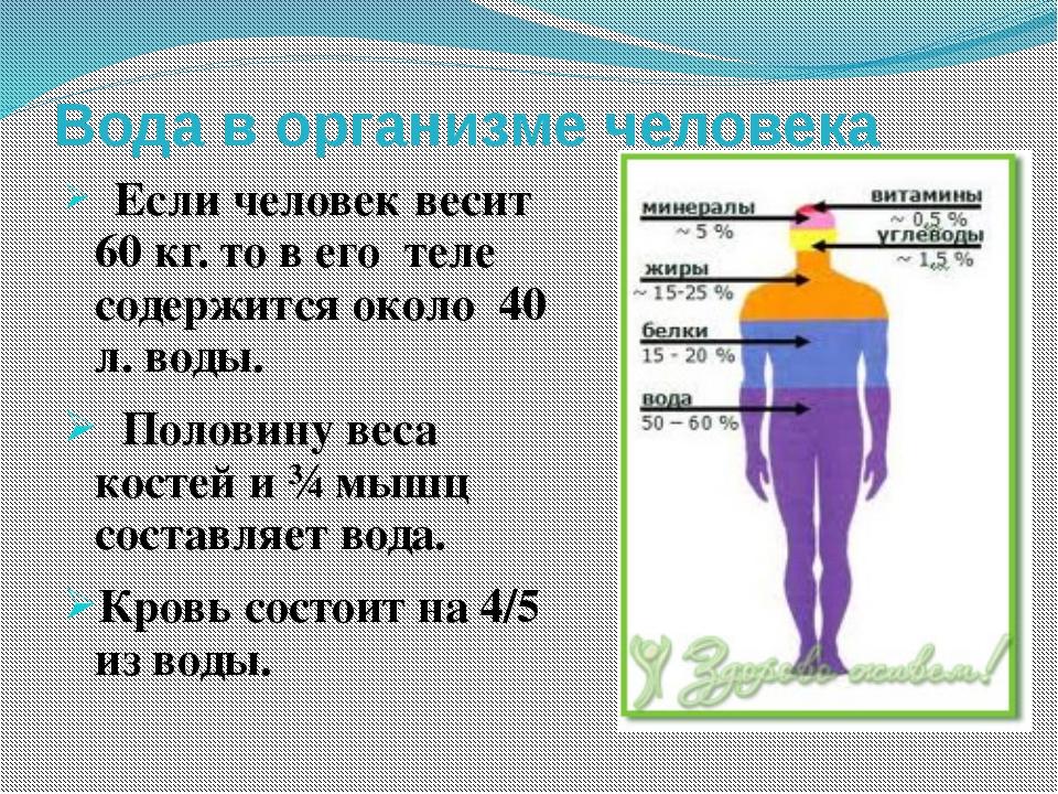 Вода в организме человека Если человек весит 60 кг. то в его теле содержится...
