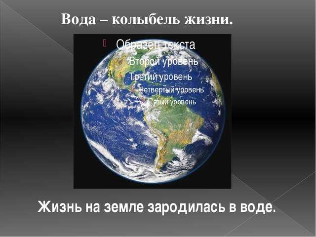 Жизнь на земле зародилась в воде. Вода – колыбель жизни.