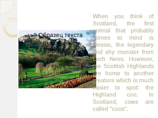 When you think of Scotland, the first animal that probably comes to mind is N...