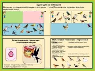 Про одних птиц можно сказать один, а про других — одна! Расскажи, как ты раз