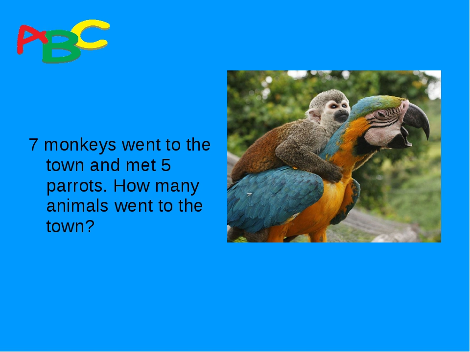 7 monkeys went to the town and met 5 parrots. How many animals went to the t...