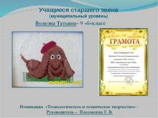 Учащиеся старшего звена (муниципальный уровень) Волкова Татьяна– 9 «б»класс Н