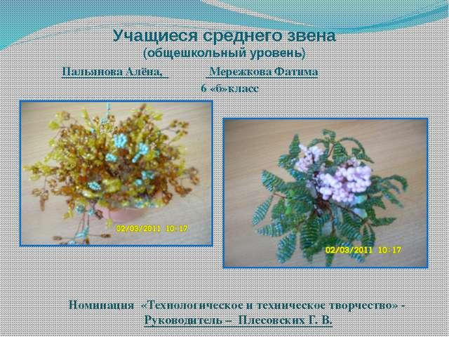 Учащиеся среднего звена (общешкольный уровень) Пальянова Алёна, Мережкова Фат...