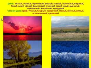Цвета: жёлтый, зелёный, коричневый, красный, голубой, золотистый, багряный, б