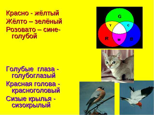 Красно - жёлтый Жёлто – зелёный Розовато – сине-голубой Голубые глаза - голуб...
