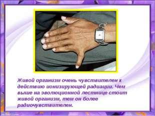Живой организм очень чувствителен к действию ионизирующей радиации. Чем выше