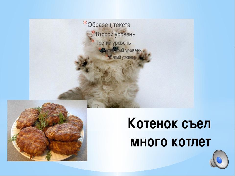 Котенок съел много котлет