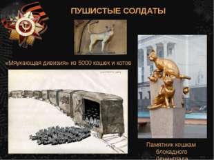 «Мяукающая дивизия» из 5000 кошек и котов Памятник кошкам блокадного Ленингра