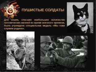 Для кошек, спасших наибольшее количество человеческих жизней во время военног