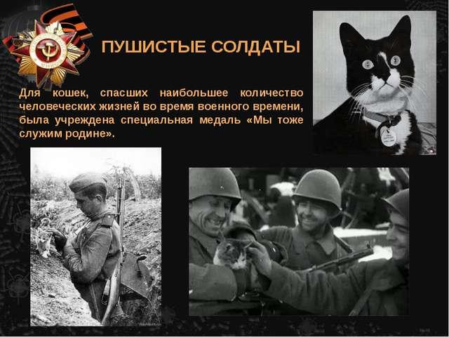 Для кошек, спасших наибольшее количество человеческих жизней во время военног...