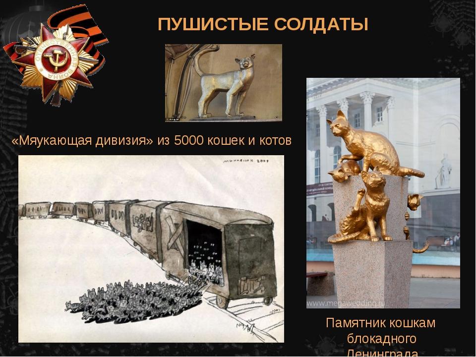 «Мяукающая дивизия» из 5000 кошек и котов Памятник кошкам блокадного Ленингра...