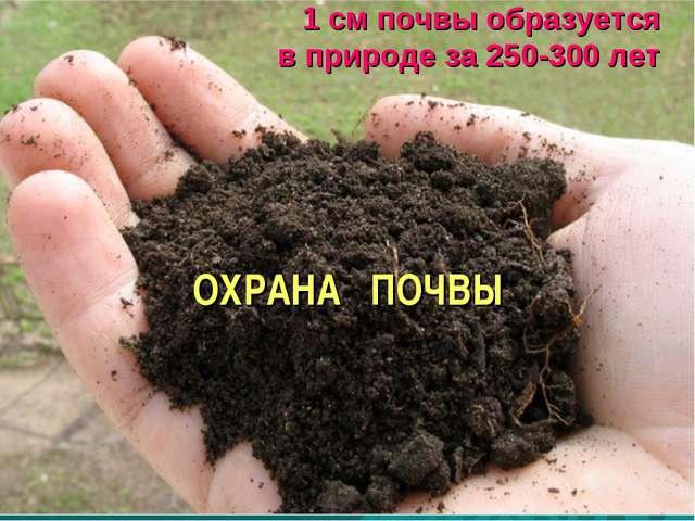 1 см почвы образуется в природе за 250-300 лет ОХРАНА ПОЧВЫ