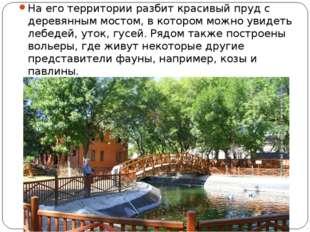 На его территории разбит красивый пруд с деревянным мостом, в котором можно