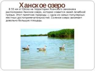 В 55 км от Ейска на территории Ясенского заказника расположено Ханское озеро