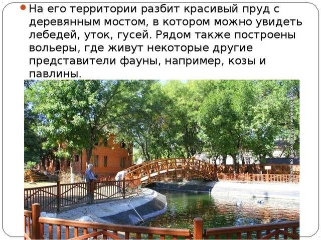 На его территории разбит красивый пруд с деревянным мостом, в котором можно...