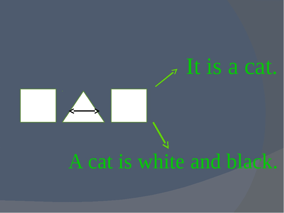 It is a cat. A cat is white and black.