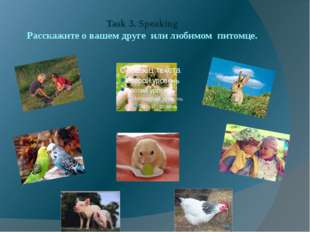 Task 3. Speaking Расскажите о вашем друге или любимом питомце.