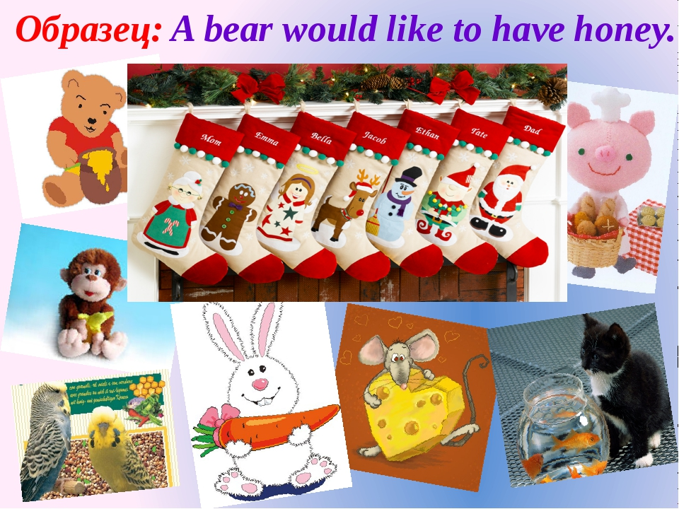 Образец: A bear would like to have honey.