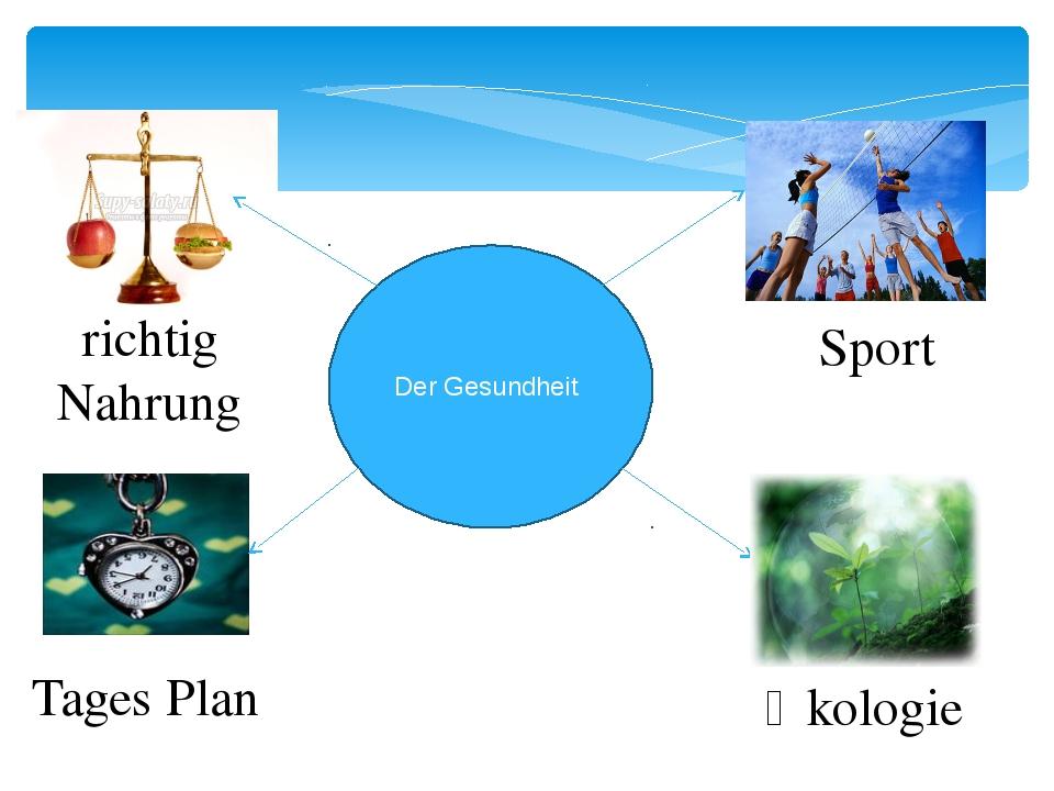 Der Gesundheit richtig Nahrung Tages Plan Sport Ӧkologie
