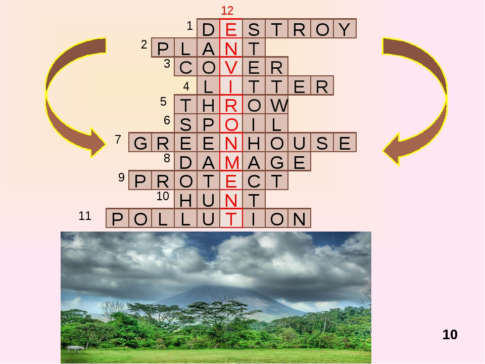 """Reading of the text (hometask). Text """"Ecology"""". 11"""