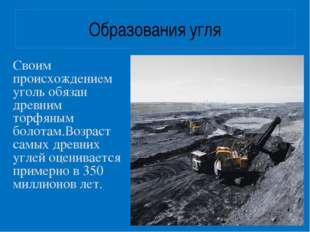 Образования угля Своим происхождением уголь обязан древним торфяным болотам.В