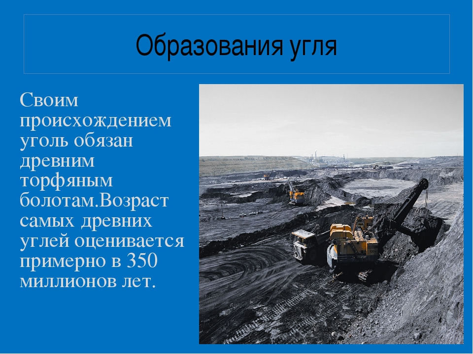 Образования угля Своим происхождением уголь обязан древним торфяным болотам.В...