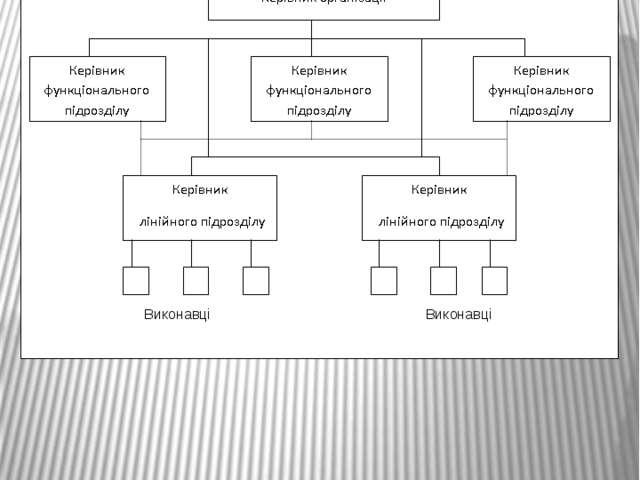 Виконавці Виконавці Принципова схема лінійно-функціональної організаційної...